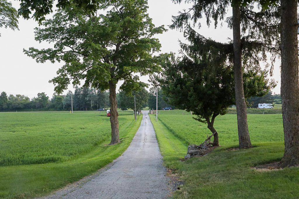 laneway at Wagyu Sekai