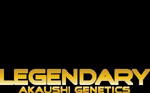 Legendary Akaushi